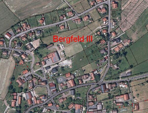 Bergfeld III